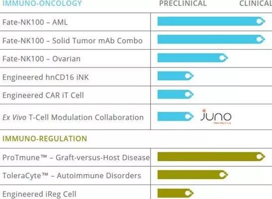 "CAR-T突破性研究:基于iPSC的""现成""细胞疗法(带有完整的视频讲解)"