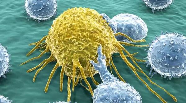 永不放弃! 为癌症患者DIY多肽疫苗,寻求生命的希望